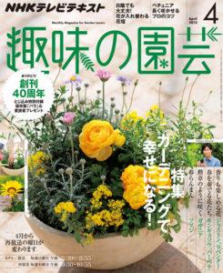 趣味の園芸 4月号