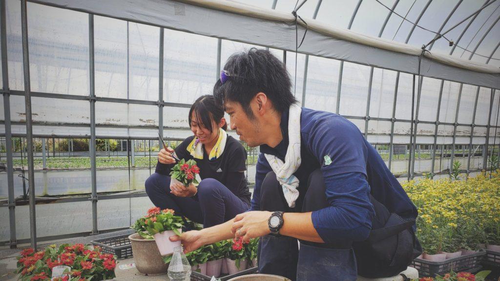 農業実習の様子 学生インターン